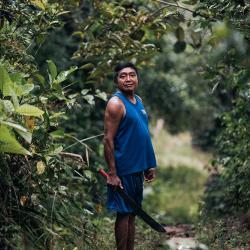 Leben im Amazonas Dschungel / DAHW