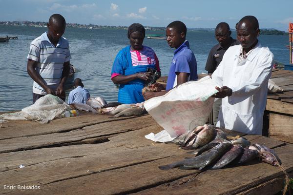An den großen Seen leben viele Fischer / DAHW