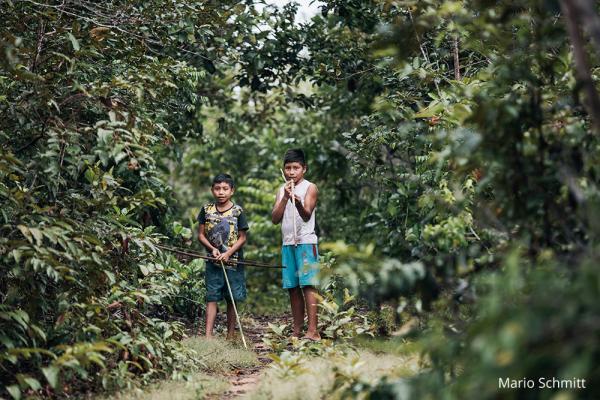 Aufwachsen im Amazonas Dschungel / DAHW